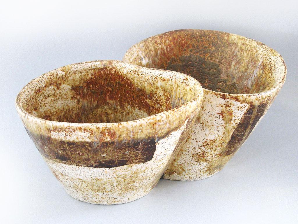 Bowl by Alenka Sekne